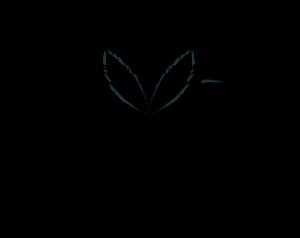 Logo Signau